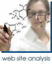 Web Site Analysis