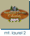 Mountain Laurel Web Site Analysis