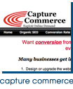 Capture Commerce Web Site Analysis